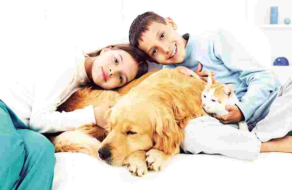 Can a Pet Get You Sick?
